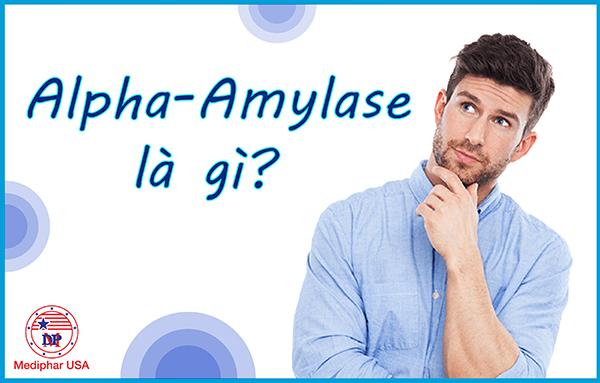 Alpha - Amylase là gì?