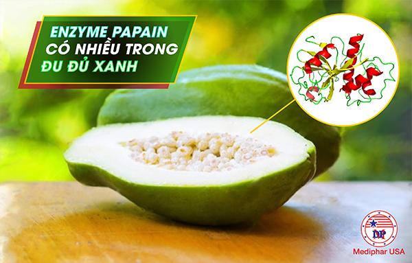 Papain là một enzyme có nguồn gốc từ thực vật được tách chiết từ nhựa quả đu đủ xanh