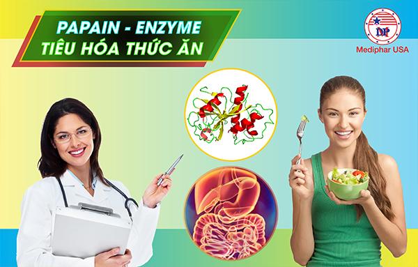 Enzyme Papain - Enzyme hỗ trợ tiêu hóa thức ăn