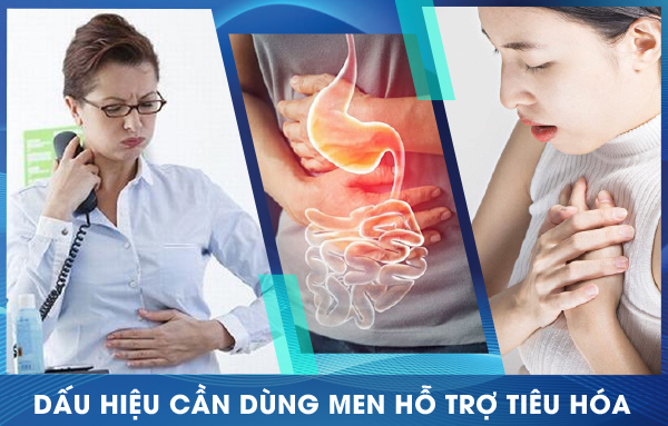 Dấu hiệu cần dùng men hỗ trợ hệ tiêu hóa Menpeptine