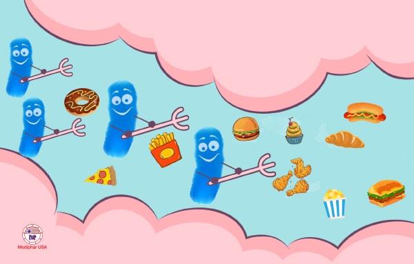 Các loại men tiêu hóa giúp hỗ trợ phân rã và rút ngắn thời gian tiêu hóa thức ăn