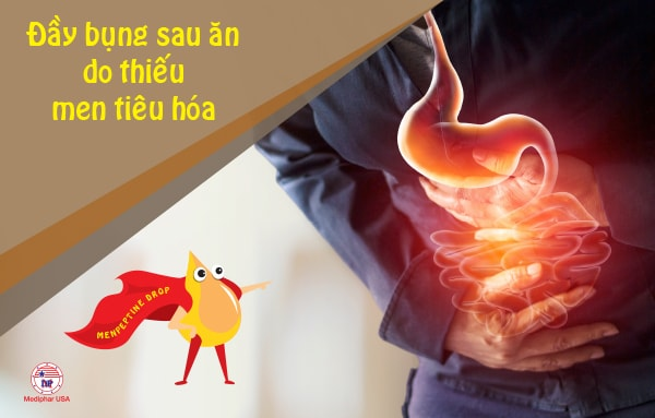 Đầy bụng sau khi ăn phần lớn là do thiếu men tiêu hóa